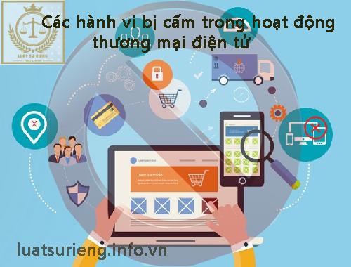 cac-hanh-vi-bi-cam-trong-hoat-dong-thuong-mai-dien-tu